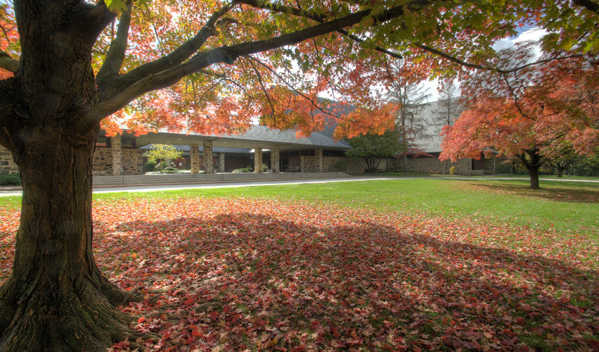 Courtyard in the Fall